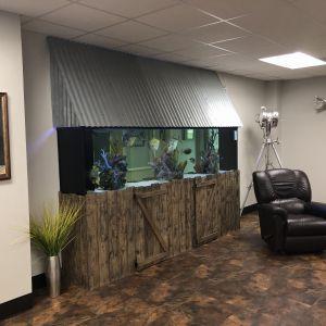 Built in 600 Gal Fish Tank,Velvet Pines Developers,Custom Home Builder, Design Build,Velvet Pines Developers,Custom Home Builder, Design Build,